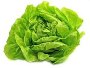 seattle20seed20lettuce20-20buttercrunch20og